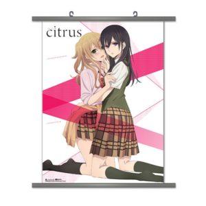 citrus-80049-800×800
